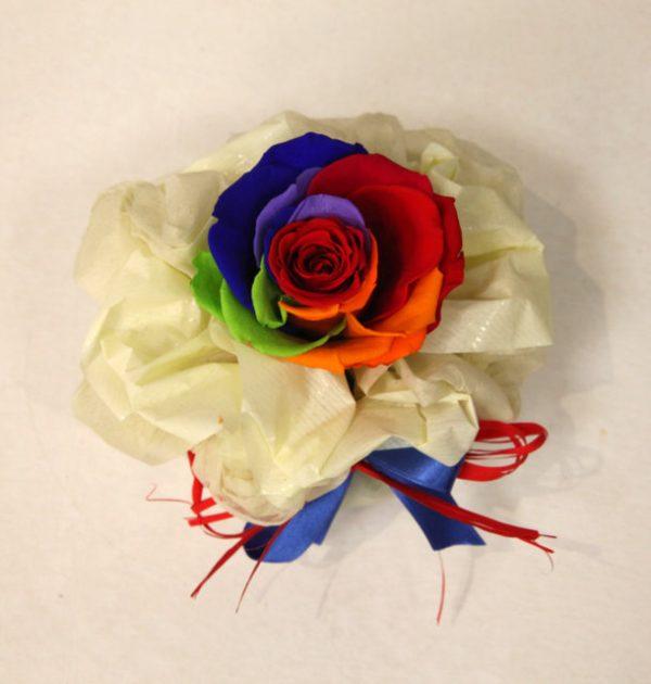 Rosa stabilizzata rainbow