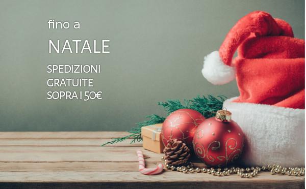 banner-promozione-natale-spedizioni-gratuite-articolo-facebook