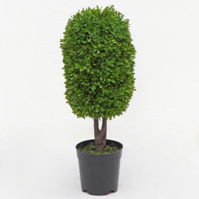 Bosso con vaso piante e fiori artificiali vivaio for Bosso vaso