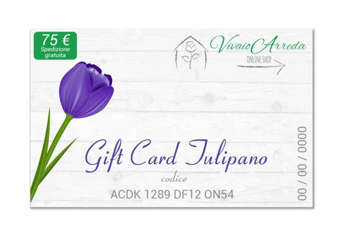 Gift Card tulipano 75 - Vivaio Arreda Online Shop