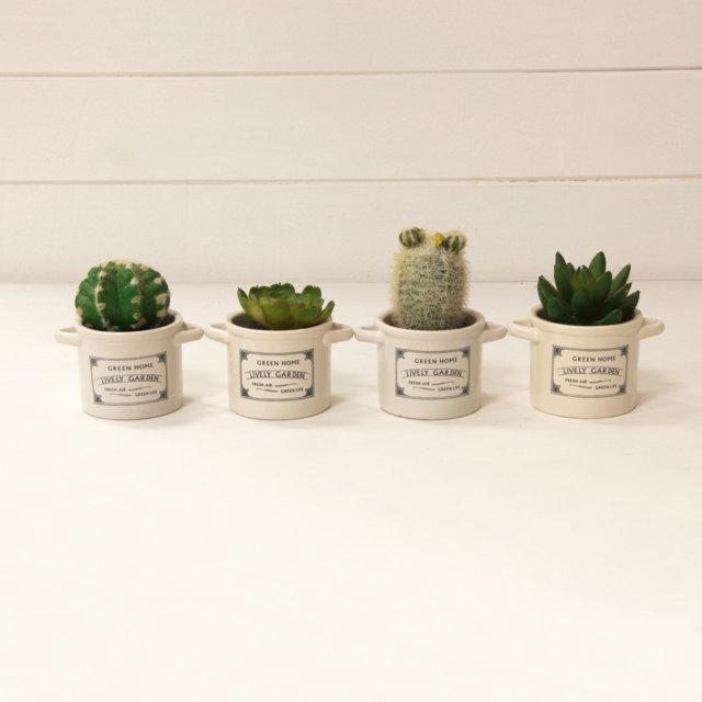 Vasetti piante migliori idee su vasi per fiori artigianato - Vasi con piante grasse ...