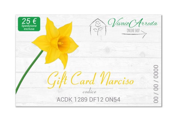 Gift Card Narciso 25 spedizione esclusa - Vivaio Arreda Online Shop