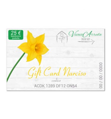 gift card narciso 25 (FILEminimizer)