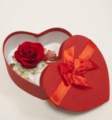 Rosa stabilizzata love in scatola cuore - Vivaio Arreda Online Shop