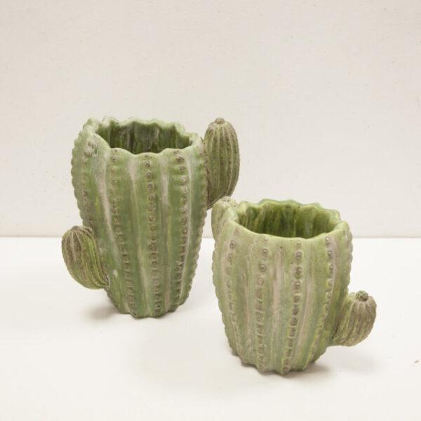 Vaso Cactus