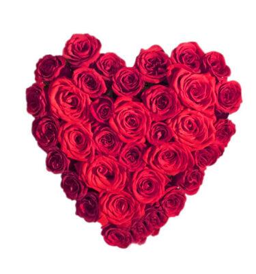 Cuore Rose Rosse
